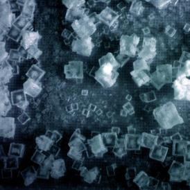 Planet A、Momoko Seto、2008、Production Le fresnoy