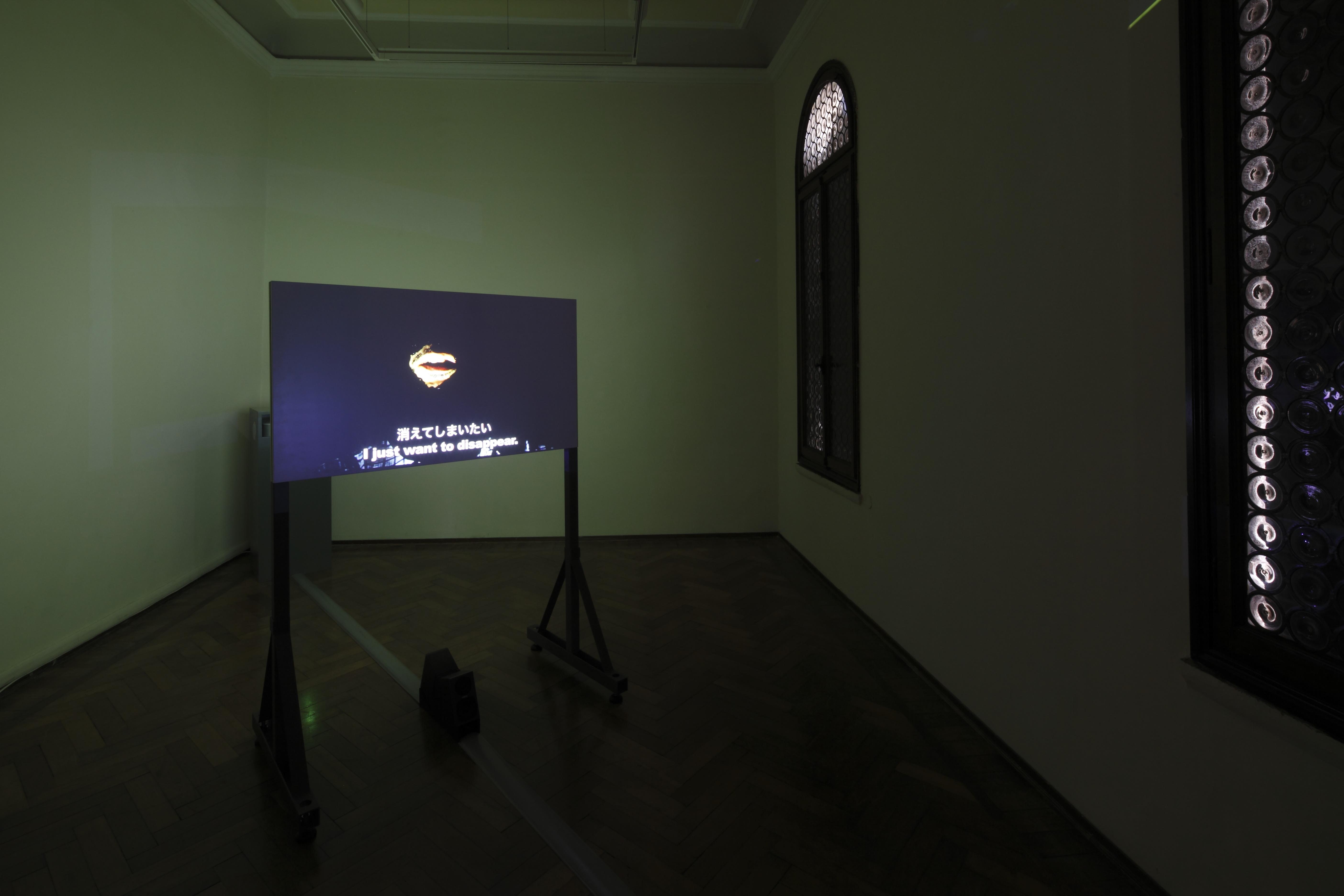 《最後の詩》 2 チャンネル・ビデオ・インスタレーション 2013 「未完風景」Palazzetto Tito、Bevilacqua La Masa 財団、 ヴェネチア、2013、展示風景 写真提供:国際交流基金、撮影:木奥惠三 Image courtesy of the artist & Annet Gelink Gallery (Amsterdam),  MUJIN-TO Production (Tokyo)