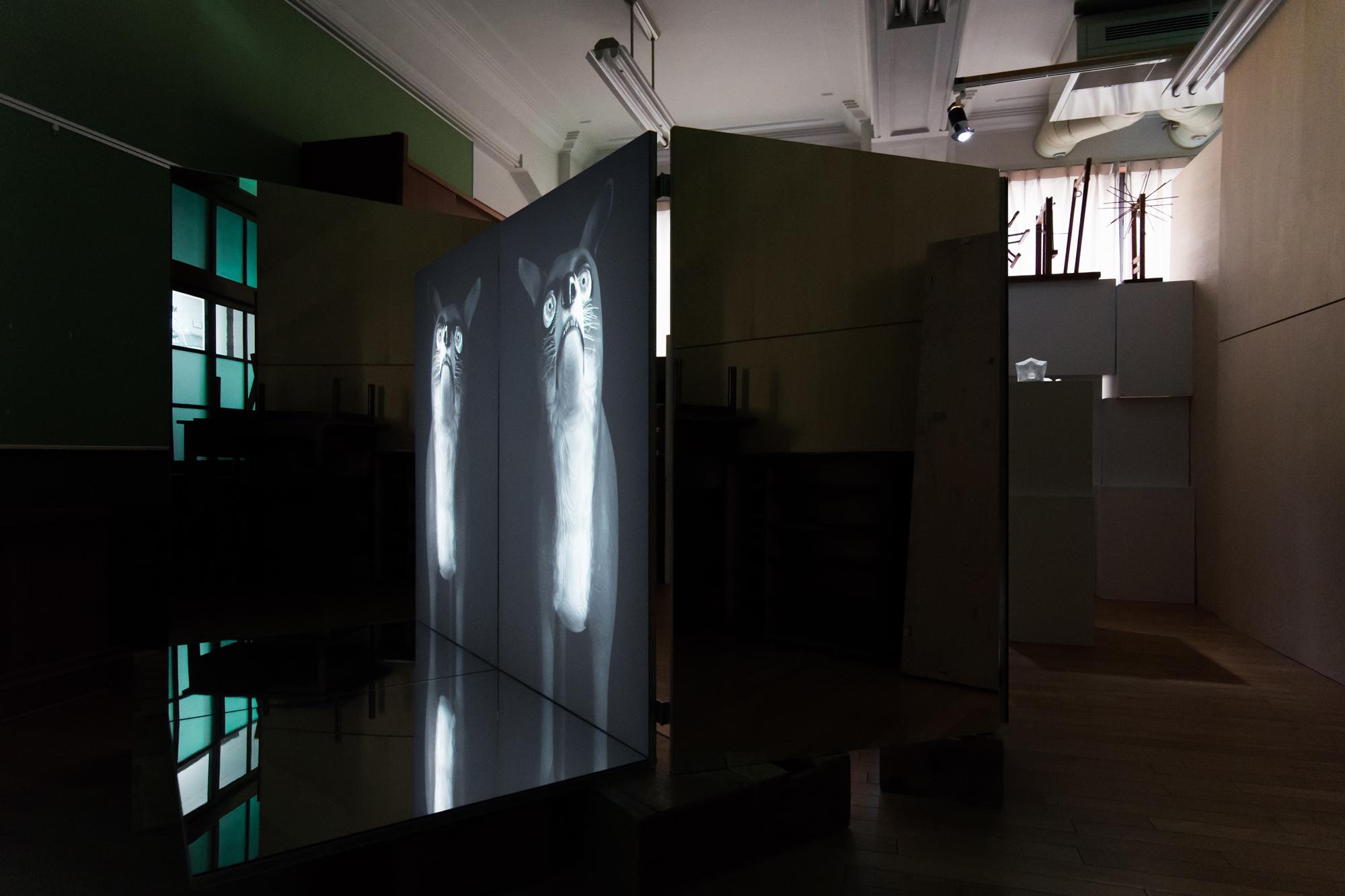 Ann Lislegaard, Time Machine, 2011. Installation view, Kyoto Art Center, 2015. Photo by Tetsuya Hayashiguchi. Courtesy of the artist and Murray Guy Gallery, New York