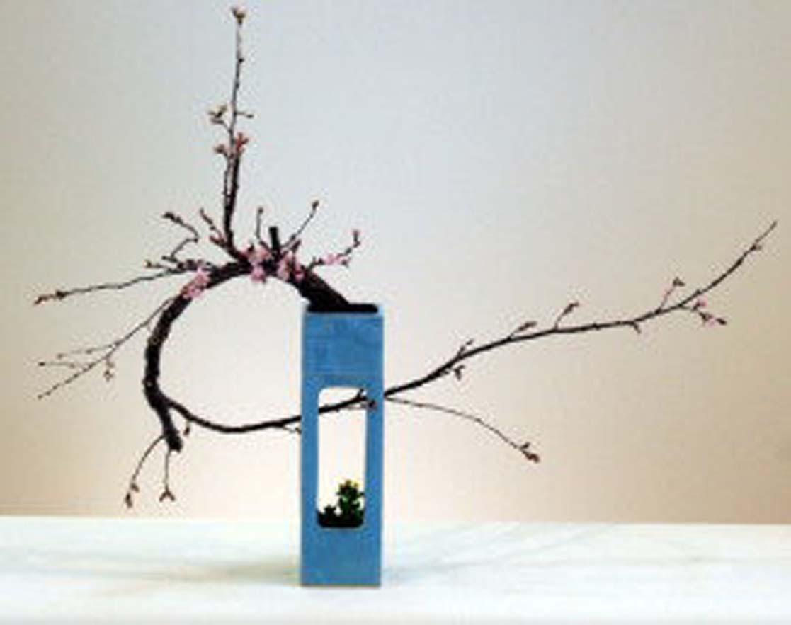 お生花 二重活け 花材 上段:桜  下段:菜の花