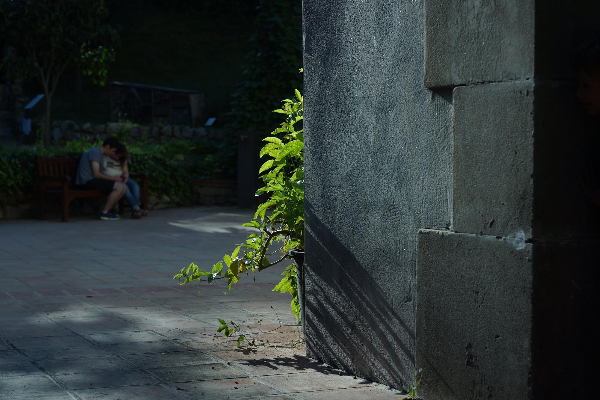 リサーチより(相模友士郎)photo by Yujiro Sagami
